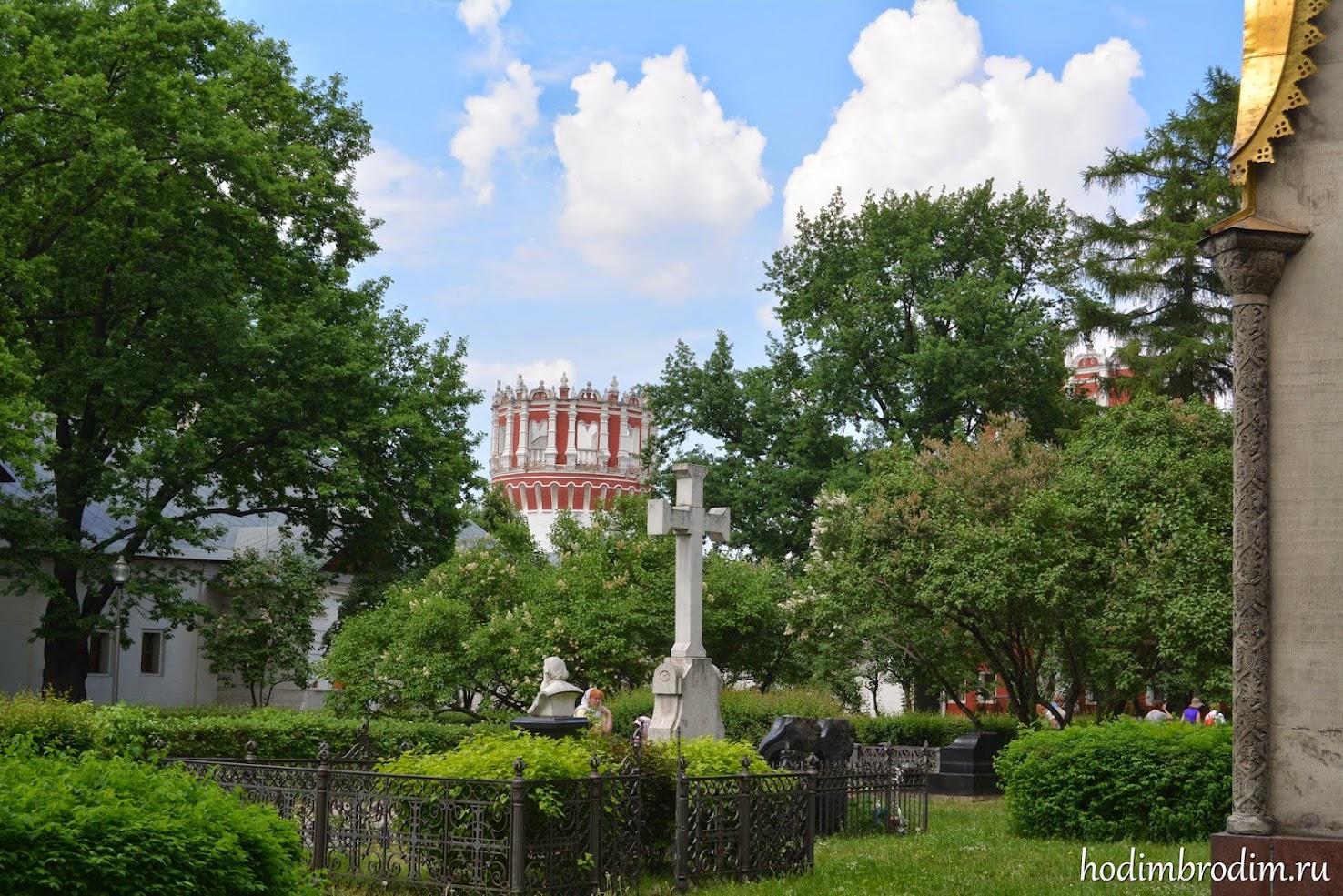 Новодевичий монастырь фото
