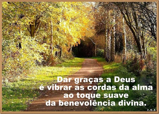 PEROLAS DA VIDA - 06