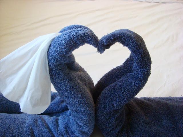 Honeymoon Swans