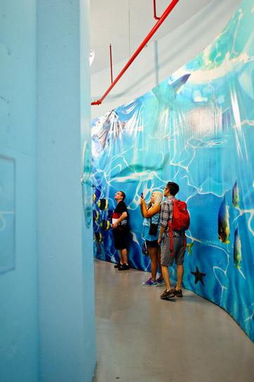 Behind the Scenes tour of the Mandalay Bay Shark Reef Aquarium.