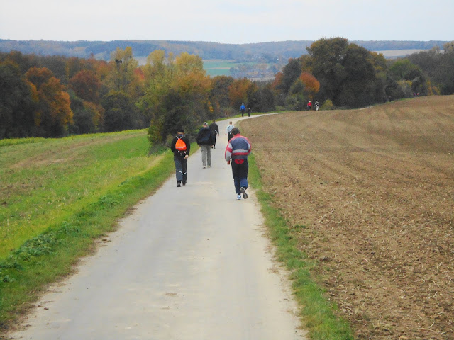 Nuit de Bocholtz(NL): 100/110km: 28-29/10/2011 DSC01096