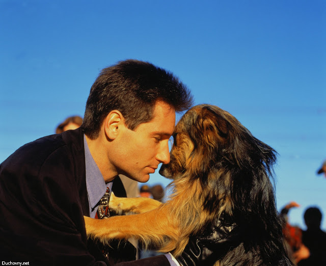 David Duchovny and his dog