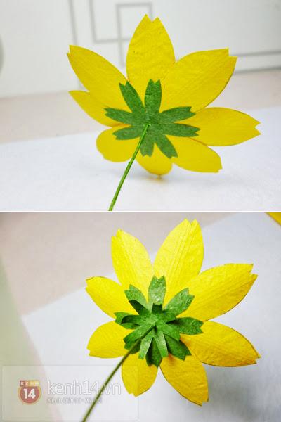 hoa+giay+6 Cách làm hoa trang trí đơn giản từ giấy