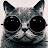 Kris U avatar image