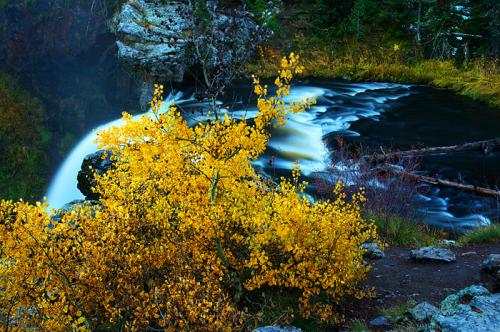 landscape-moose-falls-top
