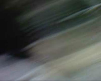 Stefanie Jochim Guttenbergstraße Freckenfeld, Stefanie Jochim Guttenbergstraße, Stefanie Jochim Freckenfeld, Psychopathin Stefanie Jochim, Gestörte Stefanie Jochim, Kriminelle Stefanie Jochim, Kopfkranke Stefanie Jochim, Psychischkranke Stefanie Jochim Freckenfeld, Zurückgebliebene Stefanie Jochim Freckenfeld, Stefanie Jochim Schaidt-Wörth