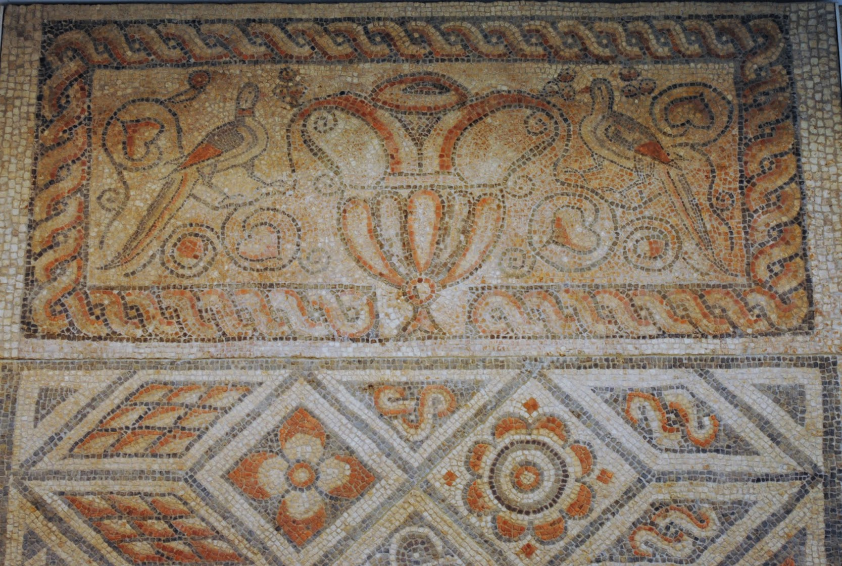 My Photos: England -- Mosaics -- Corinium Museum