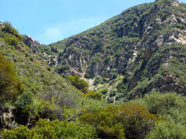 a small bit of rugged in the upper canyon