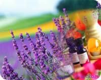 ароматы при стрессе