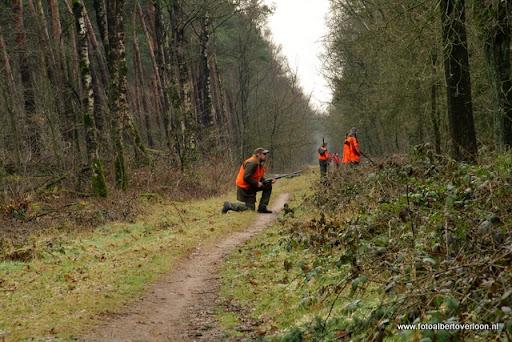 vossenjacht in de Bossen van overloon 18-02-2012 (17).JPG