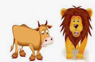 El leon y el boyero