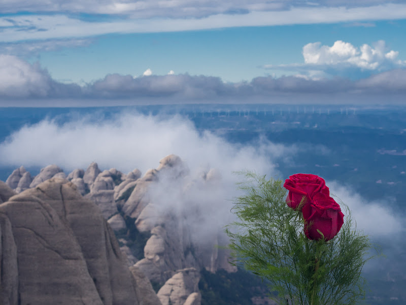 Un record des del cim de Sant Jeroni