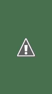 Personalised Luxury Dog Toy Bags Dog Toy Sacks