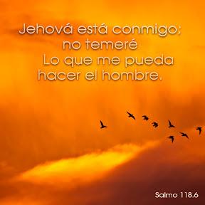 Salmo 118.6