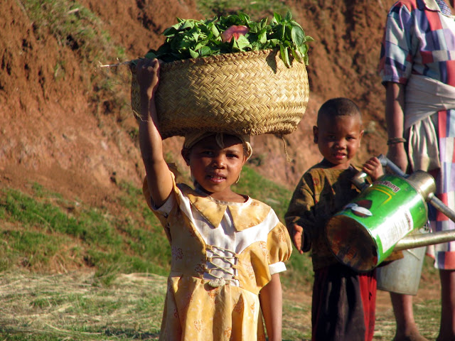 صور من مدغشقر Madagascar 14725812212