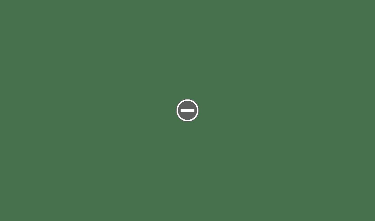 "Il est arrivé ""Hoffritz Slant"" IMG_0367+%2528Custom%2529"
