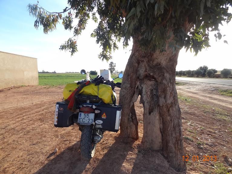 Marrocos e Mauritãnia a Queimar Pneu e Gasolina - Página 2 DSC05519