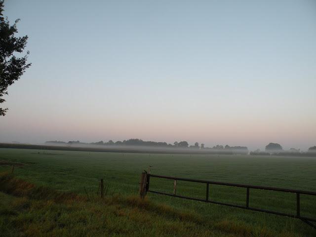 Marche Kennedy (80km) de Haaksbergen(NL): 16-17/09/2011 DSCN2853