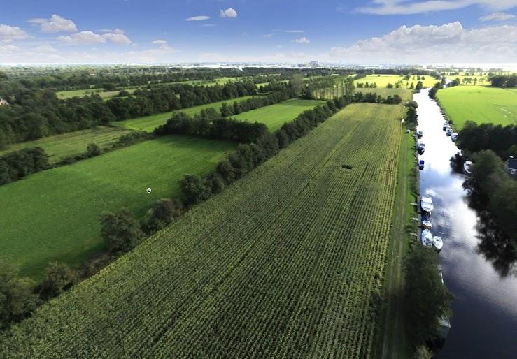 We zien een gezonde bodem, lucht, veestapel en aantrekkelijk landschap met bomen, planten, insecten en vogels. Het landelijk gebied biedt plek aan agrarische ondernemers, toerisme en landschap en nieuwe toekomstige ontwikkelingen, zoals woningbouw.