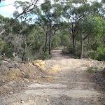 Stringybark Ridge management trail (153397)