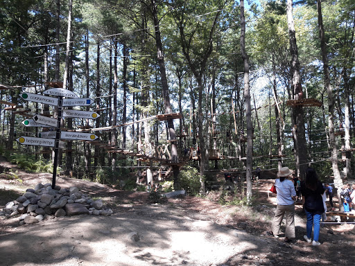 Park «TreeTop Adventures», reviews and photos, 200 New Boston Dr, Canton, MA 02021, USA