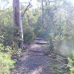 Glenbrook Gorge Track (148104)