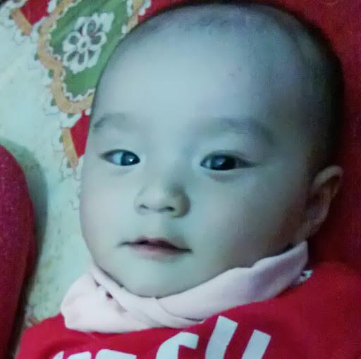 Hoaithu Tran
