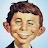 Bo Bob Brain avatar image