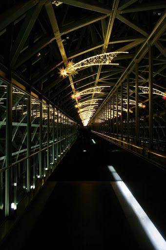 【写真】行事 : 京都駅・イルミネーション