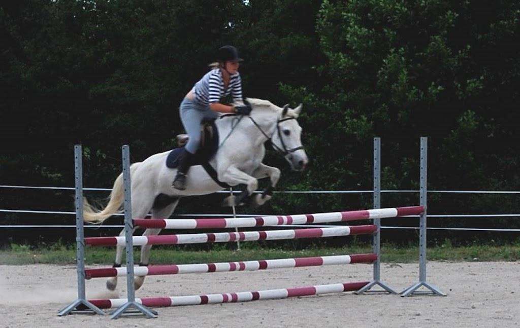 Concours de saut d'obstacles à l'Epinaye des Templiers, Amailloux (79)