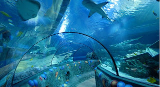 Gardaland Sealife