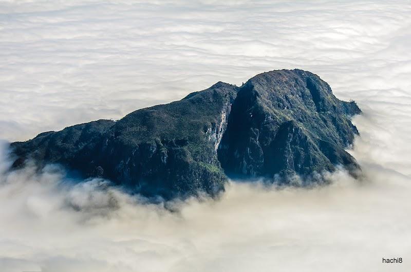 Đầu năm, thăm núi Muối - bay trên đại dương mây và hái sao trời 9