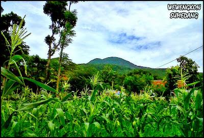 Gunung Tampomas Dilihat Dari Desa Licin