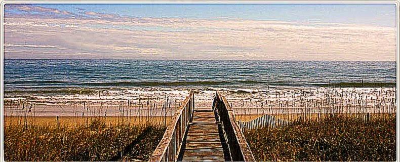 Beach Guide Find the Best Beaches in South Carolina