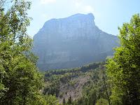 Entre les arbres, le Mont Granier