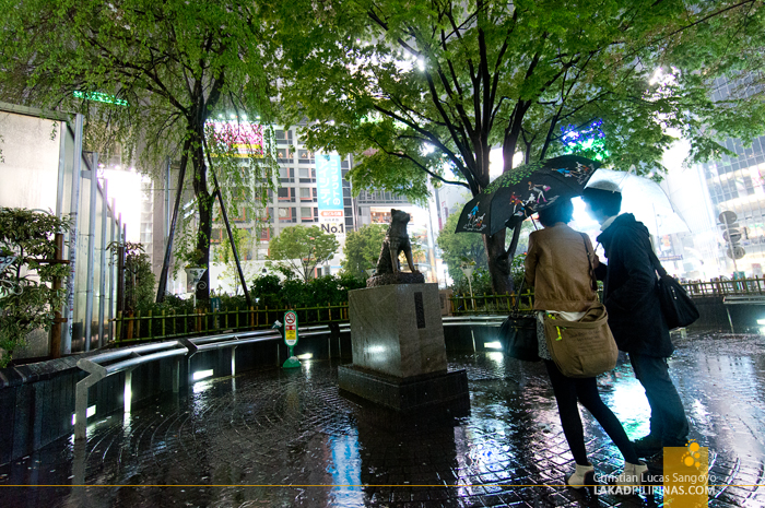 The Hachiko Statue at Tokyo's Shibuya Crossing