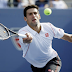 2013 US Open Men's Singles Championship Preview