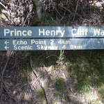 Prince Henry Cliff Walk sign (9287)