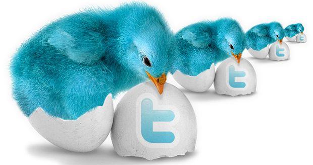 твиттер аккаунты