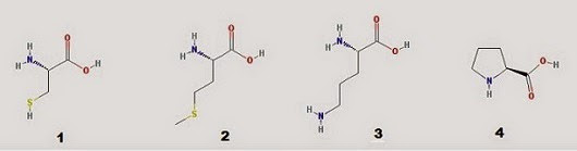 Fig. I.1: Structures of selected amino acids: 1) cysteine 2) methionine 3) ornithine 4) proline