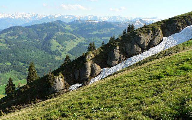Blick auf die Hörnergruppe vom Steineberg Allgäu