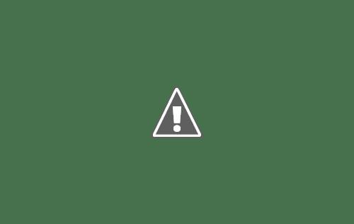111111111111+copy - Кошки ))