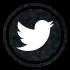 Suivez moi sur Twitter_LInsolenceDesFilles