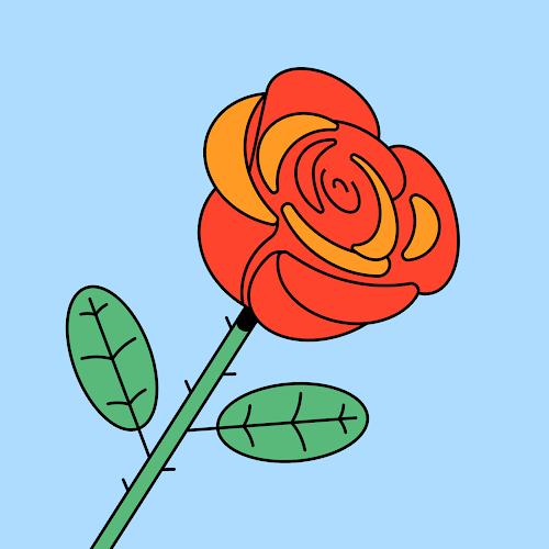 The Profile Photo