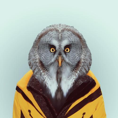 *Zoo Portraits動物時尚秀:正經八百時裝篇! 11