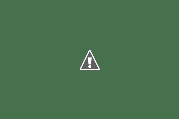 Camos rusos (en imágenes) 385_4