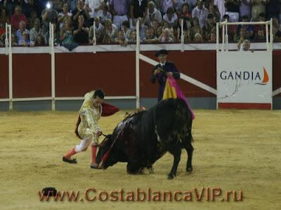 Corrida, CostablancaVIP, Коррида, Plaza de Toros, арена для боя быков, тореро, тореадор, матадор, пикадор, бык, коррида в Валенсии, коррида в Испании, недвижимость в Испании