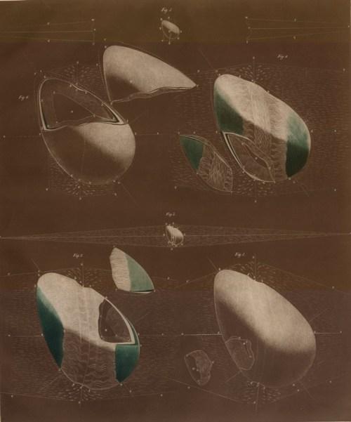 Atlas Cosmobiographique - Petur Beron, 1859