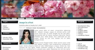 3 Column Wordpress theme Blossoms