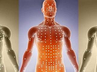 Resultado de imagem para meridianos dos corpos